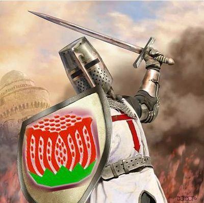 Red waratah crusader